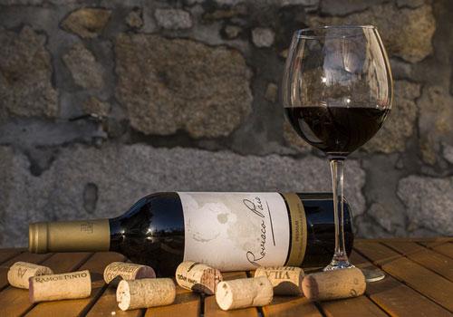 Onlineshop mit Wein