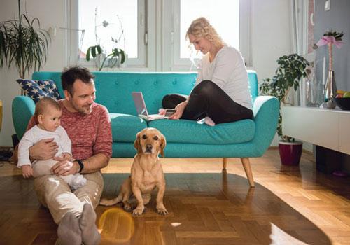Onlineshop mit Tierfutter und Tierbedarf